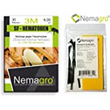 Nemagro® Kombipack - SF Nematoden 3M + Gelbtafeln (3mio 30 Pflanzen oder 6qm) - Ihre Erste Wahl gegen Trauermücken!