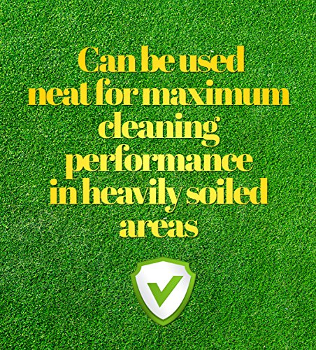Pro-Kleen Artificial Grass Cleaner - Perfect for Homes with Dogs - Cleans, Disinfects, Deodorises & Fragrances - 4 x 5… 5