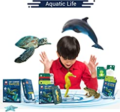 Redchimpz Aquatic Life 5D+ AR VR Fun Learning Cardz