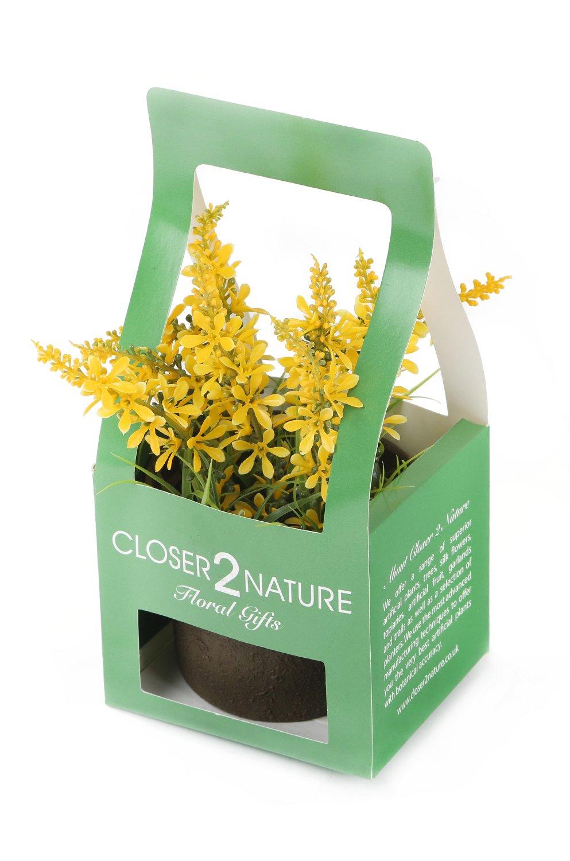 Closer To Nature FP005YC – Campanilla artificial en caja de regalo, 18 cm, color amarillo