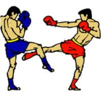 Muay Thai  Blocks and Counters APP