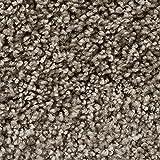 Teppichboden Auslegware | Hochflor Langflor | 400 und 500 cm Breite | grau braun | Meterware, verschiedene Größen | Größe: 1 Muster