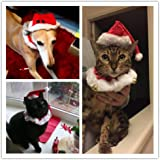 2pcs Hund Katze Weihnachten Halsbänder und Hut Kragen mit Glocke Weihnachtshüte Halsband Krawatte Weihnachten Kostüm Set