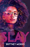 SLAY: the Black Panther-inspired novel about virtual reality, safe spaces and celebrating your identity