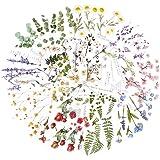 12 Feuilles Autocollants Stickers Motifs Fleurs Naturel Gommettes Décoratifs 110 x 150mm Etiquettes Adhésif de DIY Scrapbooki