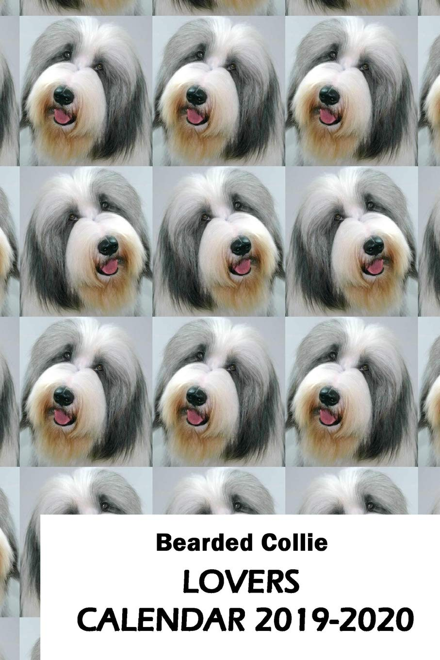 Bearded Collie Lovers Calendar 2019-2020