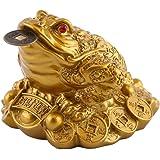 Walfront, statuetta a forma di rana con moneta portafortuna in bocca, portatrice di fortuna e ricchezze, decorazione feng shu