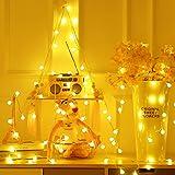 Briignite Guirlande Lumineuse Interieur, 5M 40 LED avec USB, Blanc Chaud 2700K, Guirlande LED Boule pour Chambre, Guinguette,