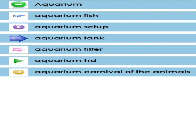 Aquarium - 4