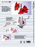 Olympia Pochettes de plastification à chaud, DIN A4, 125 microns, 100 pochettes tansparentes