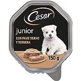 Cesar Comida Húmeda para Perros Cachorros Sabor Pavo y Ternera (Pack de 14 Tarrinas x 150g)