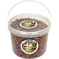 Supa Dried Mealworms for Wild Birds, 5 Litre Bucket   High Energy Protein Rich Treat For Garden Birds   Attract More Birds To Your Garden   Quality Wild Bird Food