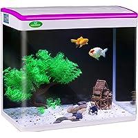 JAINSONS PET PRODUCTS Fish Tank Mini Aquarium Combo (Colour May Vary, 22 L)