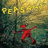 Songtexte von Richard Dawson - Peasant