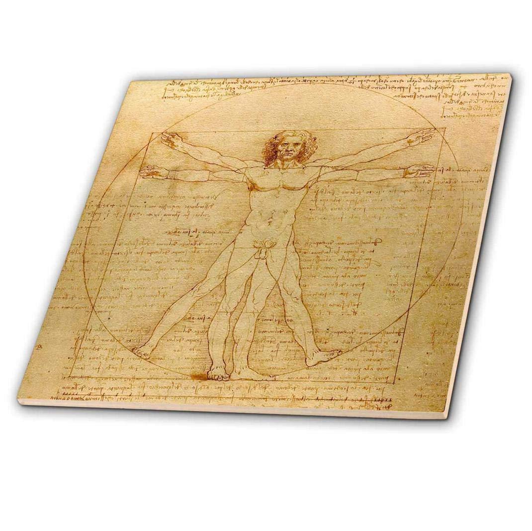 3dRose Vitruve par Leonardo da Vinci 1490-fine Art-Human Anatomique Anatomie Stylo et Encre Drawing-Ceramic Tile Pouces (CT 155633_ 4), 30,5cm