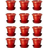 Abasr Plastic Planter, Brown, 12Inch, Pack Of 12