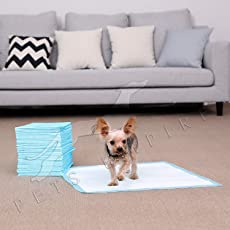 Pets Empire Super Absorbent Puppy Trainer Training Pads Toilet Pee Wee MATS Dog CAT (Small (60 X 45CM), Pack of 50)