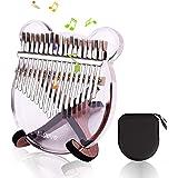 EiDevo Kalimba 17 Clés Pouce Piano,Transparence Kalimba Portable Piano à Pouce avec Marteau à Musique,Thumb Piano Cadeau d 'a