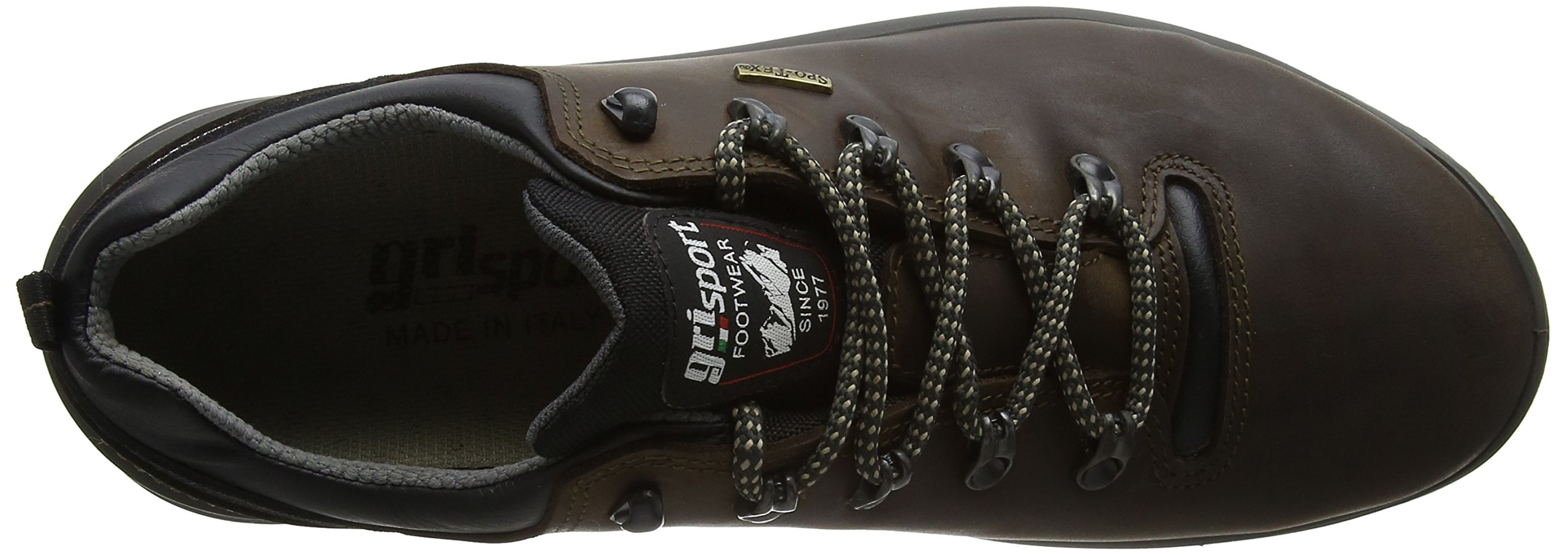 Grisport Men's Warrior Low Rise Hiking Boots 7