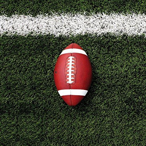 Apple iPhone 4 Housse Étui Silicone Coque Protection Football Field Goal Sport Étui en cuir marron