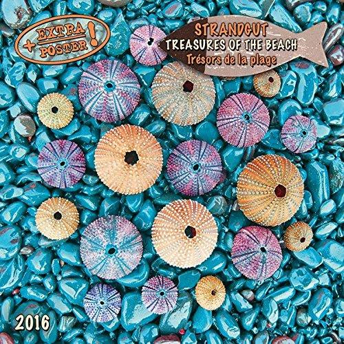 Strandgut 2016: Kalender 2016