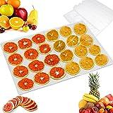 LWZko 6 Pièces Feuilles Déshydrateur Silicone, Anti-Adhésif Tapis Silicone, Maille Séchoir à Fruits, 28,5 x 38,5 cm Réutilisa