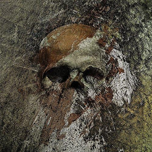 Apple iPhone 5 Housse Outdoor Étui militaire Coque Crâne Tête de mort Os Sac Downflip noir