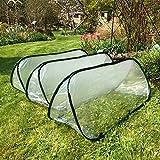 Pack of 3 - Large - 1.5m x 0.6m x 0.6m High - Garden Pop-Up UPVC Mini Greenhouse Poly Cloche Tunnel Bild 2