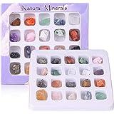 DIYARTS 20 Pcs Colección de Roca de Cristal Mineral Natural Fósil Mineral Adorno Piedra Preciosa de Cristal para Educación In