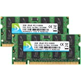 DUOMEIQI 4GB (2X 2GB) 2RX8 PC2-5300S PC2-5300 PC2-5400 DDR2 667MHz CL5 200 Pin 1.8v SODIMM Notebook RAM Non-ECC Unbuffered Laptop Memory Module Compatible with Intel AMD & MAC System—Green