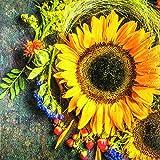 20 Servietten Sonnenblume im Naturgesteck/Blumen/Herbst 33x33cm