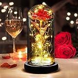 SANBLOGAN Rosa Eterna, Rosa Bella e La Bestia Rosa Eterna Incantata Rosa in Cupola di Vetro con Luci a LED Regali Magici Deco
