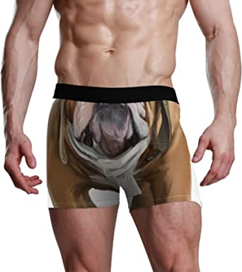NaiiaN Slip da Uomo Bulge Pouch Stretch Boxer Trunk Dog Bulldog Inglese Aviator City