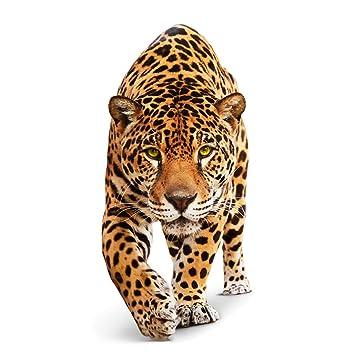 mantiburi wandtattoo mehrfarbig no.648 creeping jaguar 70x148 cm ... - Wandtattoo Küche Günstig