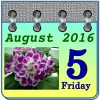 Calendar Violets