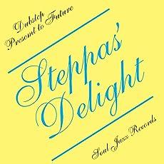 Steppas' Delight-Dubstep Present to Future