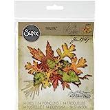 Sizzix 660955Thinlits Lot de, Feuillage d'automne par Tim Holtz, 14-Pack