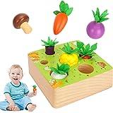 Sinwind Montessori Juguetes Niños Aprendizaje, Juegos Educativos de Granja Infantiles Ejercicio, Juguetes de Madera de 1 año