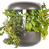 Plantui SG6-G Smart Garden, Grigio, 29x29x37 cm