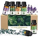Etherische oliën, GLAMADOR etherische oliën set (6x10 ml), geurolie voor essentiële olie voor aromatherapie-diffusers, 100% z