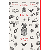 Little: A Times and Sunday Times Book of the Year