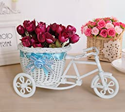 Tied Ribbons Cycle Shape Plastic Flower Vase with Peonies Bunches (12.7 cm x 12.7 cm x 19.05 cm)