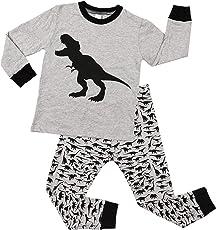 Charmo Nachtwäsche Kleine Jungen Schlafanzug Mädchen Halloween Pyjamas Baumwolle Langarm Pyjama 2 Stück PJS Sets mit Schädel Dinosaurier Kürbis Auto Print 2-7 Jahre