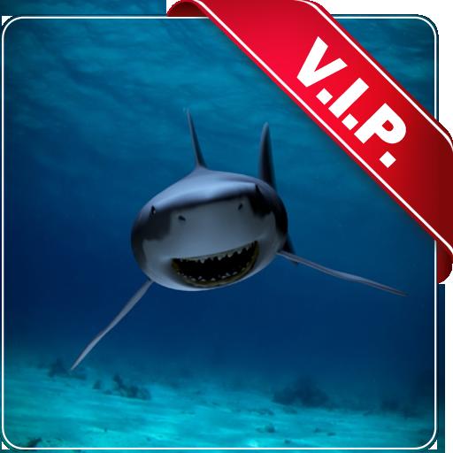 Sfondi desktop squalo bianco