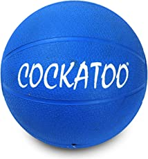 Cockatoo medicine ball, Material Rubber, Ideal For Professional