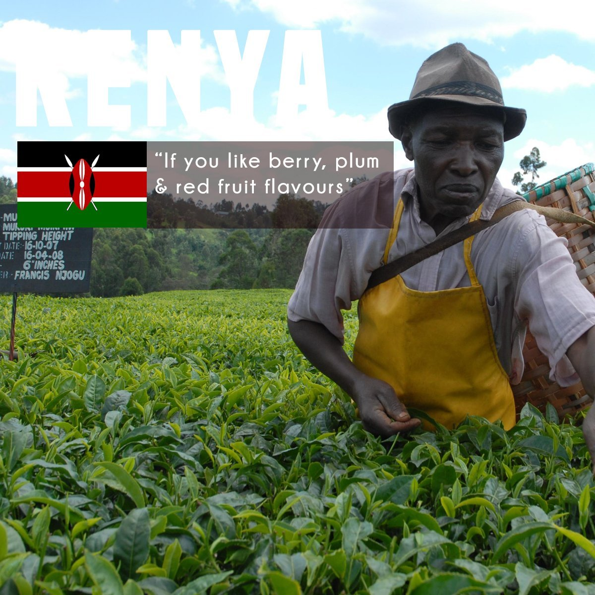 Kenya-Peaberry-Green-Coffee-Beans-100-Arabica-Speciality-Single-Origin-Kenya-Green-Beans-For-Home-Roasting