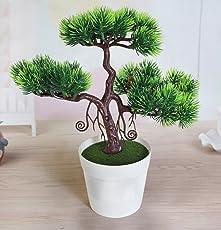 Tied Ribbons Plastic Bonsai Tree with Pot (24.99 cm x 24.99 cm x 27 cm) Multicolour