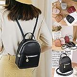 SHONTON Women's Backpack - Fashion Daily Backpack Pocket Zipper Convertible Bag - Elegant Backpack Girls Backpack for Women