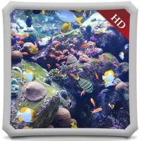 Aquatic Beauty HD -  AQUARIUM  Wallpaper & Themes