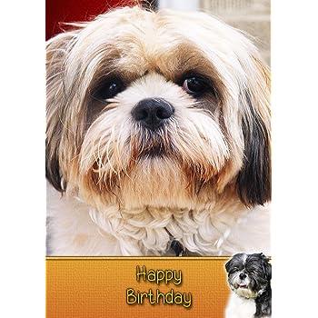 Shih Tzu Birthday Card 8x55 Mix Match On 8x55 Cards Any 3